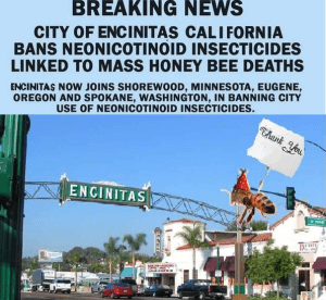 Encinitas ends the use of neonicitinoids on public property